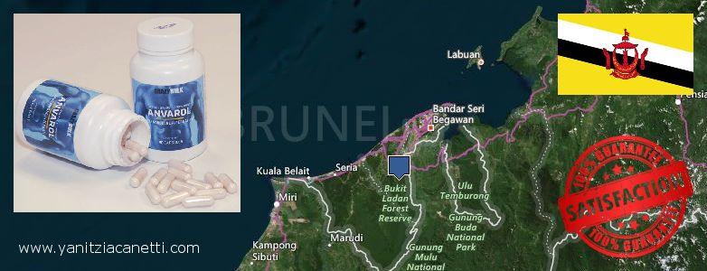 Wo kaufen Anavar Steroids online Brunei
