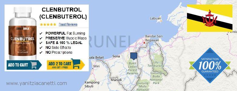 Wo kaufen Clenbuterol Steroids online Brunei