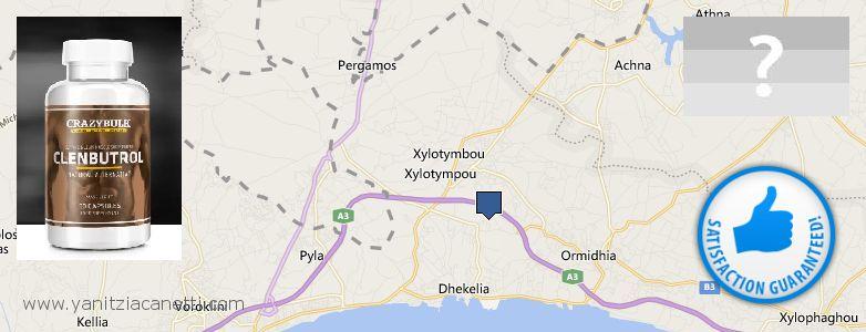 Where Can You Buy Clenbuterol Steroids online Dhekelia