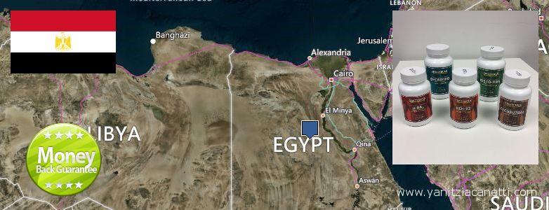 Dove acquistare Clenbuterol Steroids in linea Egypt