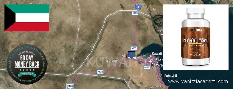 Gdzie kupić Clenbuterol Steroids w Internecie Kuwait