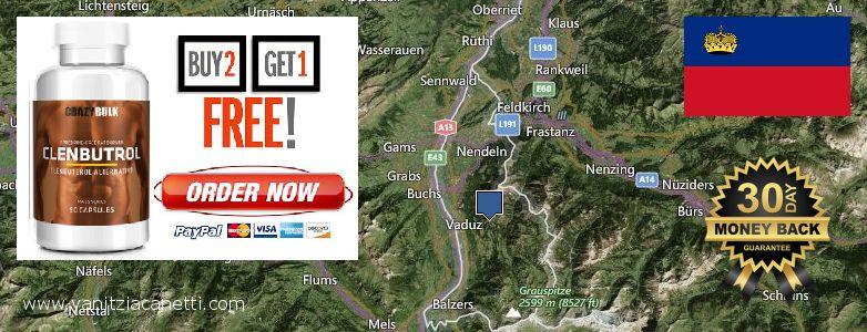 Purchase Clenbuterol Steroids online Liechtenstein