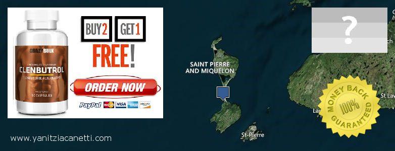 Where to Buy Clenbuterol Steroids online Saint Pierre and Miquelon