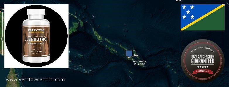 Best Place to Buy Clenbuterol Steroids online Solomon Islands