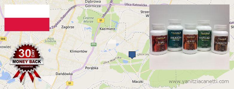 Where to Buy Clenbuterol Steroids online Sosnowiec, Poland