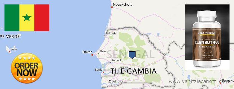 Purchase Clenbuterol Steroids online Thies Nones, Senegal