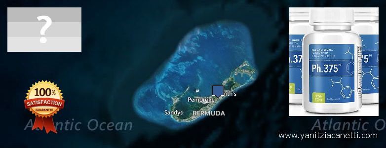 Where Can I Purchase Phen375 Phentermine 37.5 mg Pills online Bermuda