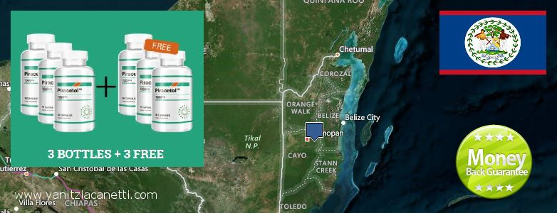 Where Can I Buy Piracetam online Belize