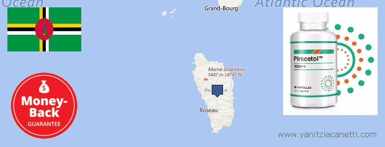 Where to Purchase Piracetam online Dominica
