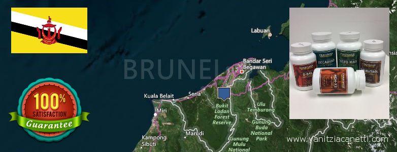 Gdzie kupić Winstrol Steroids w Internecie Brunei