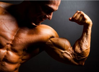 Where to Buy Clenbuterol in Mozambique